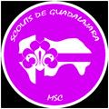 Scouts de Guadalajara Logo